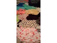 job lot of womens clothing ( 22 items )