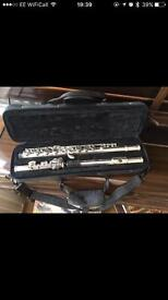 Phoenix flute and first tuition book