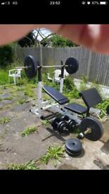 Gorilla sports weights