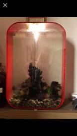 Red biorb 60 l fish tank.