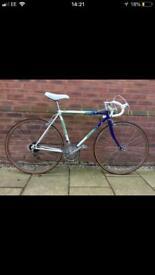 Men's emmelle strada vintage racing bike - blue and green