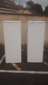 tall free standing fridge and freezer.