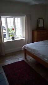 Sunny room with en-suite loo, in shared house in quiet town centre location, and on road parking.
