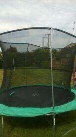 10 ft tramp