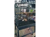 PARROT CAGE ON A STAND