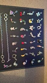 Bracelet (T-bar) and Charms