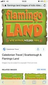 Looking to hire a caravan for a week in September at flamingo land
