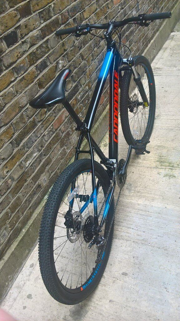 1046fb53f78 Cannondale Trail 5 Related Keywords & Suggestions - Cannondale Trail ...