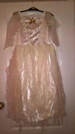 Angel Fancy Dress Costume