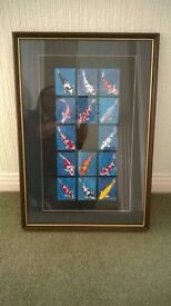 Koi Cards mounted in Frame