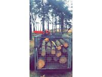 LOGS FOR SALE.