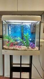 Fish tank AquaStart500 with stand