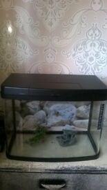 panorama fish tank and stand