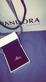Rose gold Princess Pandora Ring.
