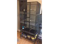 Large cage for canaries and other birds for sale