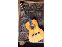 Acoustic guitar Encore ENC340FT