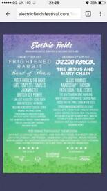 Weekend electric fields ticket