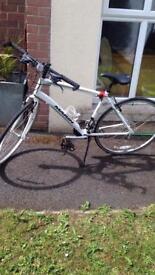 Ladies Marin Terra Linda Bicycle