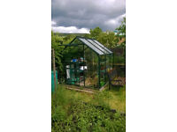 glass and alluminium greenhouse with automatic temperature control window. Good condition. 6x6