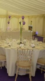 Tall/ Thin Glass Vases, mirror plates and purple glass stones