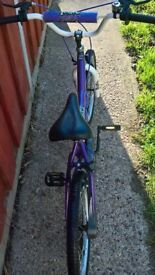 bmx stitch magna girls bike