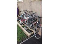 8 bikes /////6 adaults////2 kids