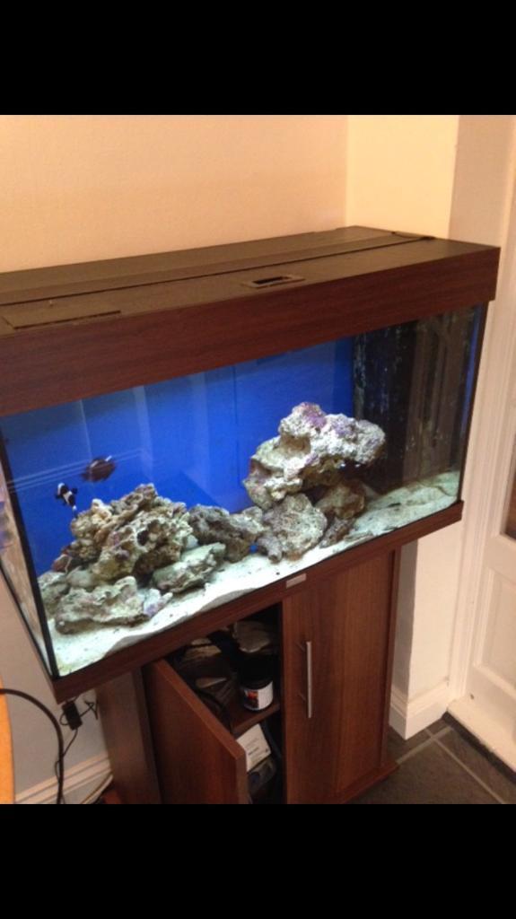 Juwel Rio 125 litre Marine Aquarium **Reduced**