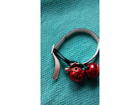 LOST - Cat collar found in Blackwater, 2 red bells, one silver bell, black collar with sparkles