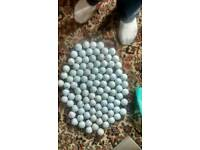 100 Titleist Golf Balls