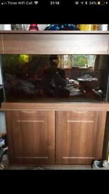 180l aquarium