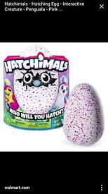 Hatchimal available immediate collection