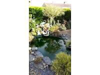 Pond base