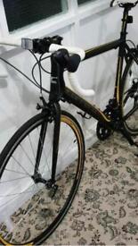Carera racing bike