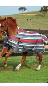 Horse coat