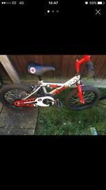 Boys zinc bike