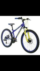 Kids carrera bike