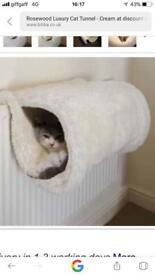 New cat tunnel