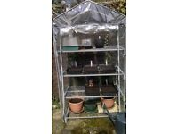 Plastic Greenhouse / Grow House