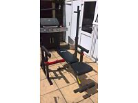 BODYMAX Adjustable Squat Stands with Barbell Hooks & Dips Handles & Dumbbell Weights Bench (dumbell)