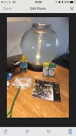 Biorb 30 litre aquarium and extras