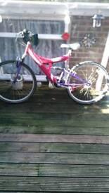 Suspension bike