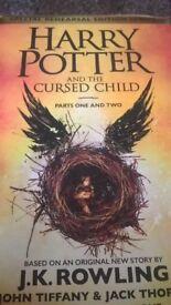 Harry Potter Special Edition Script