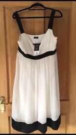 Ladies Size 16 Dress (new)