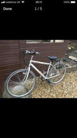 Women's Silver Raleigh Bike with Paneer