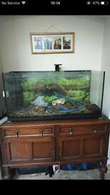 Reduced large aquarium