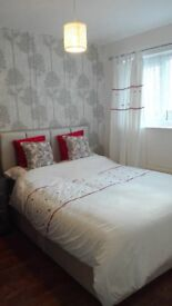 Spacious double bedroom in Borehamwood