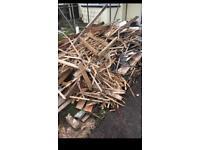 Free firewood/ bonfire wood