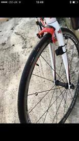 Wilier Triestrina Racer bike