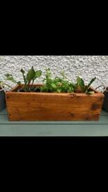 Handmade Planter indoor/outdoor herb