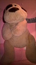 huge dog teddy five pounds
